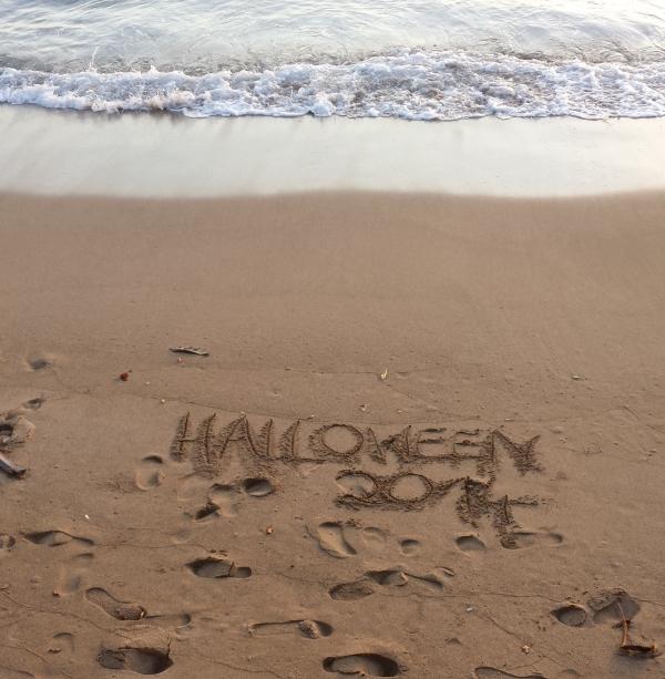 Halloween in Lahaina 2014