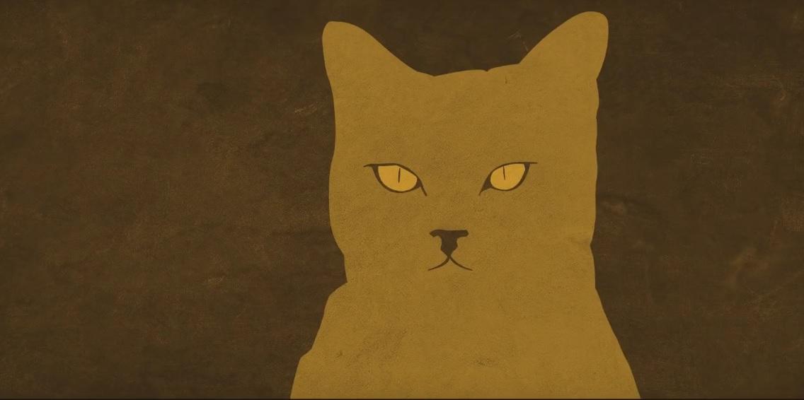 A Case of Distrust Cat